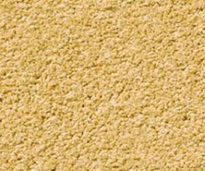 Yellow Carpets