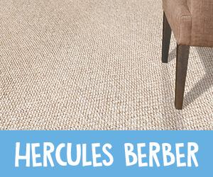 Hercules Berber Carpet